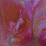 Pinks 2013  20 x 27 cm